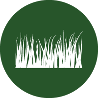 Green and white icon of messy, uncut grass leaves, to represent natural grass pitches.