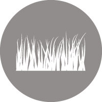 Icon showing wavy grass leaves to indicate natural grass surfaces.