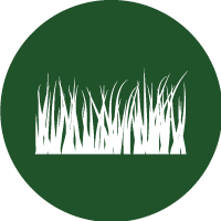 Green and white icon of grass leaves, to represent natural and artificial grass surfaces and pitches.